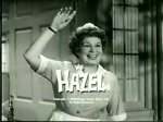 Hazel #2